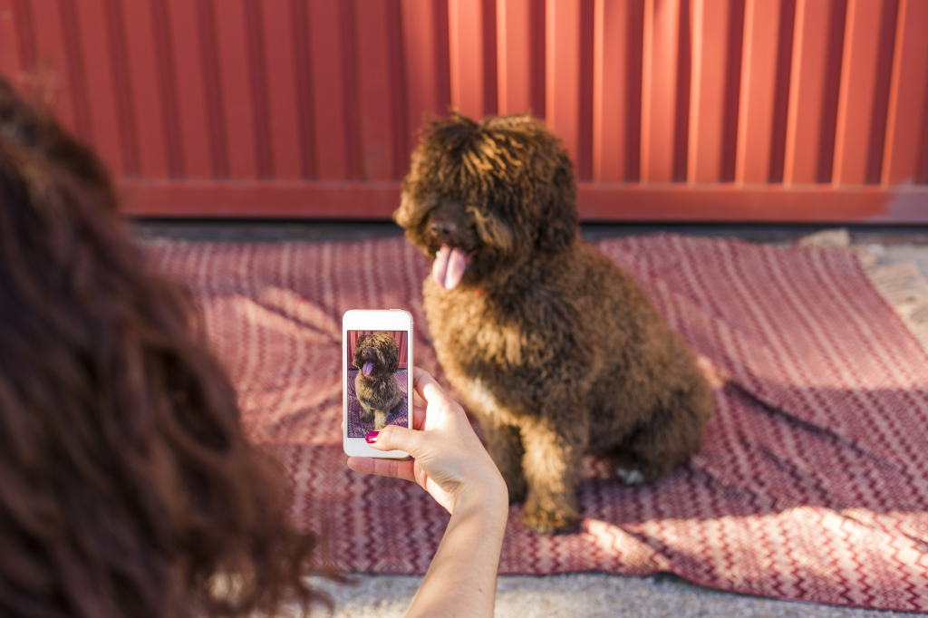 Chica sacando foto a perro