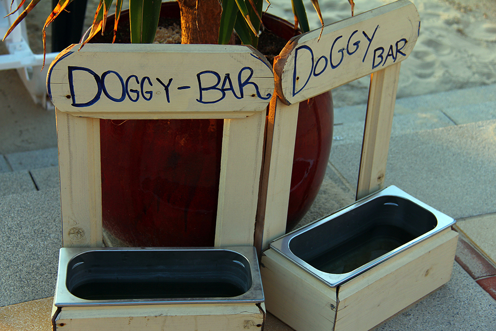 Restaurantes Dogfriendly, Gavirental