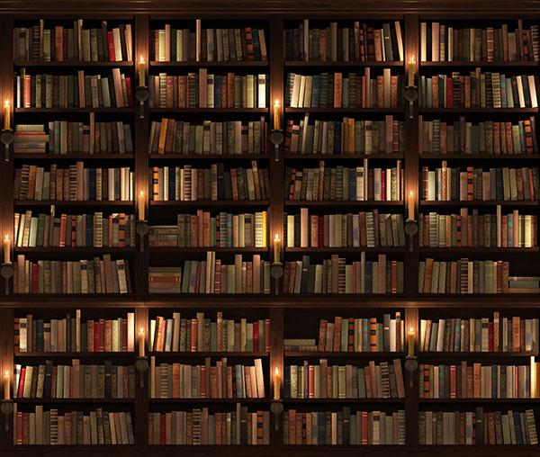 Librería antigüa de Madrid, de madera, blog Gavirental