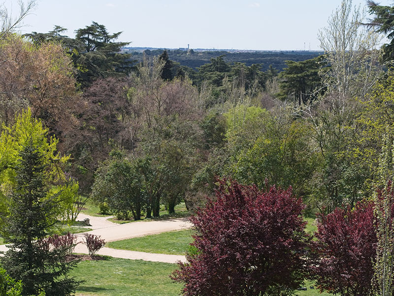 Parque del oeste en Argüelles, Madrid, blog gavirental