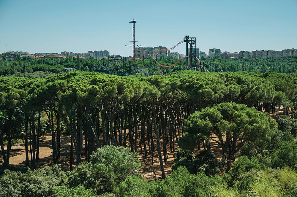 Parque de atracciones de Madrid, gavirental