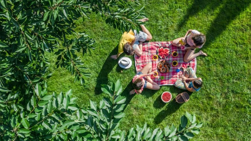 Los lugares más impresionantes para hacer un picnic en Madrid