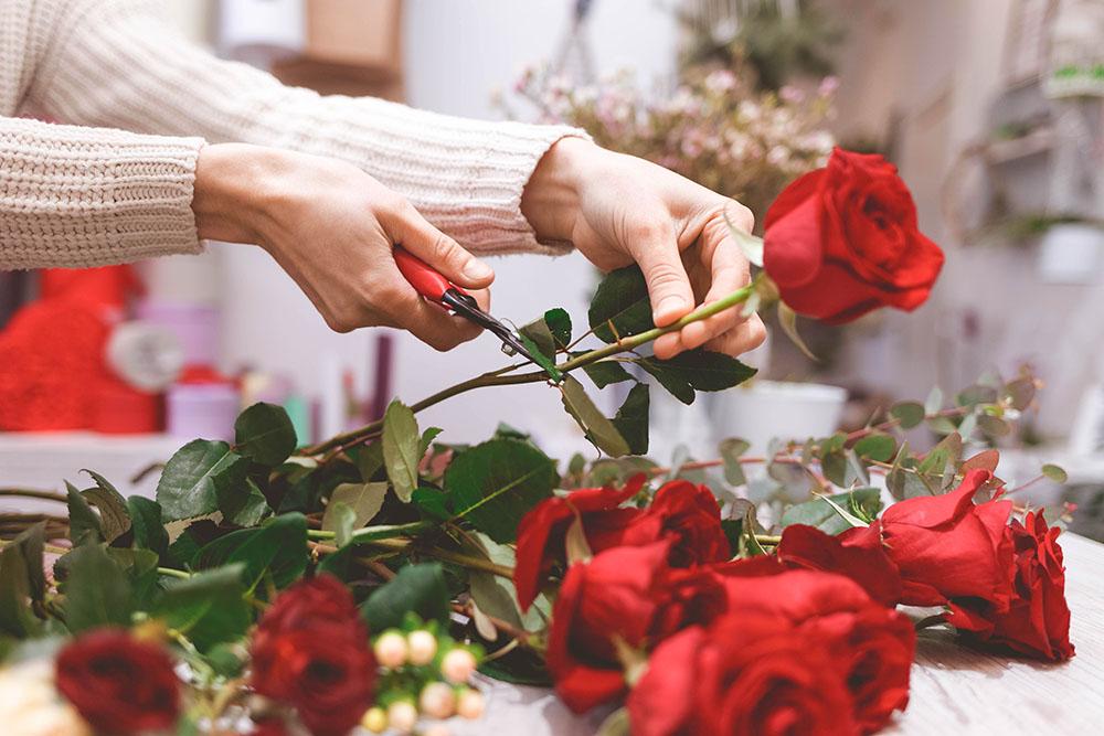 Rosas para san valentín, gavirental