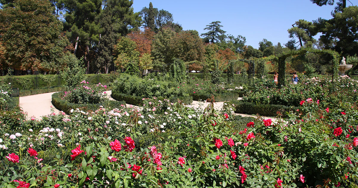 Real jardín botánico, gavirental