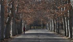"""""""Rutas saludables"""" de Madrid para practicar deporte"""